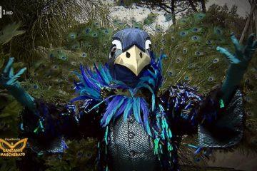 Il Cantante Mascherato: chi è il pavone?